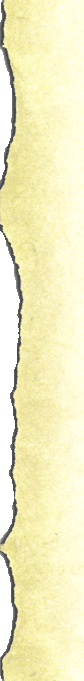 Paper's Left Side